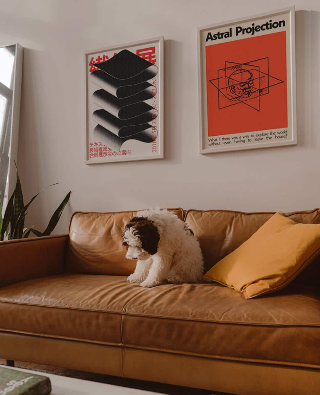 2 Art Prints Framed On The Wall In The Lounge Above A Sofa And Dog